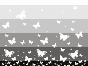 Rise like a butterfly with these table placemats. Great kitchen placemats to make your dinner table stand out.